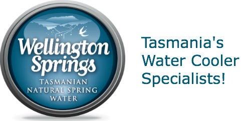 Wellington Springs bottled water